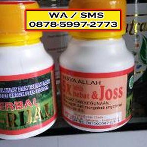 obat kuat cap kuda bapak jamal wa sms 62 878 5997 2773 judul situs
